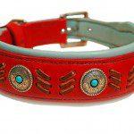 Collier Chien Navajo Confort+