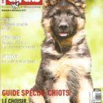 VosChiens Magazine