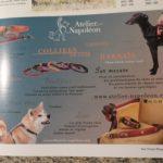 vos chiens magazine publicité de l'Atelier Napoléon