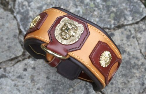 Lion Majorquin