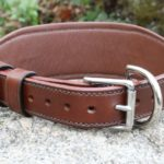 COLLIER DE RETENUE TRES GRAND CHIEN_5