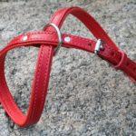 harnais cuir rouge très petit chien laisse assortie_3