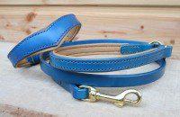 Collier Cairn Terrier & laisse