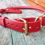 collier cuir rond étrangleur réglable très grand chien