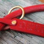collier cuir rond étrangleur réglable très grand chien_4