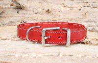 Collier chien rouge