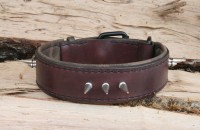 Collier Spikes grand chien