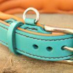anneau porte médaille sur collier en cuir pour chien