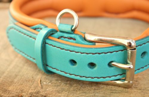 collier chien cuir turquoise