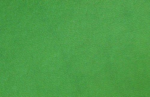 Cuir vert anis