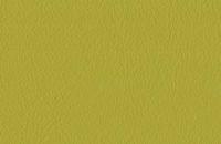 Doublure standard vert pistache