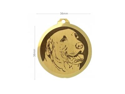 Médaille Chesapeake Bay Retriever