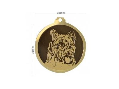 Médaille Briard