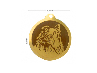 Médaille Berger des Shetland