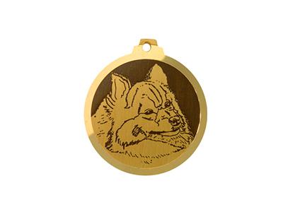 Médaille Spitz Moyen