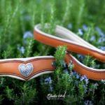 parure collier et laisse courte en cuir pour Braque Hongrois
