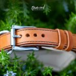 détail bouclerie de collier en cuir pour Braque Hongrois