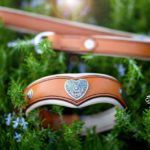 parure collier coeur et laisse en cuir fauve pour Braque Hongrois